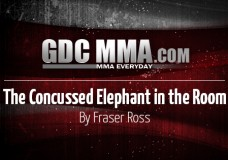 The Concussed Elephant in the Room