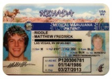 "Matt Riddle says ""UFC fired me for taking my medicine"""