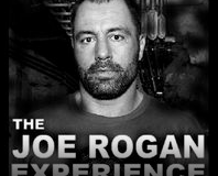Georges St Pierre on the Joe Rogan Podcast